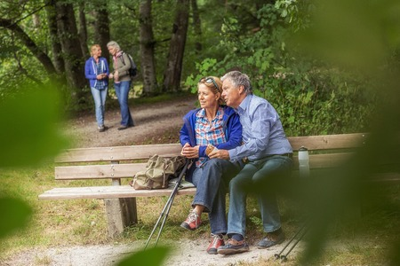 50 54 years: Couple sitting on bench in forest, looking at view