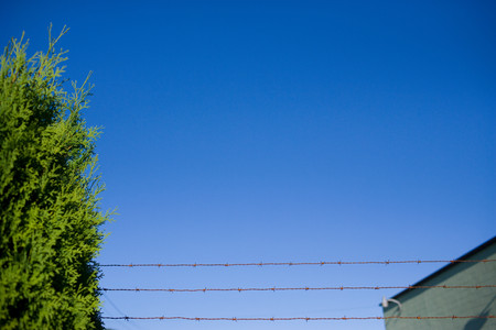 barbed wire fence: Barbed wire fence against clear blue sky