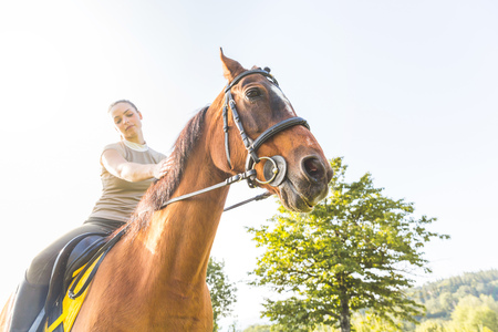Woman on horse, stroking