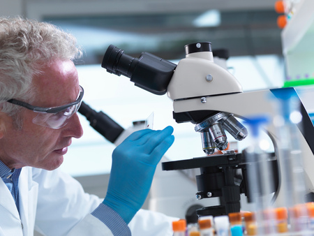 specimen testing: Scientist preparing a sample slide containing a human specimen to view under a microscope in laboratory for medical testing LANG_EVOIMAGES