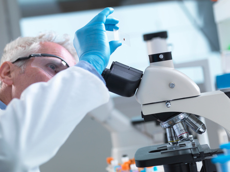 specimen testing: Scientist preparing a sample slide containing a human blood specimen to view under a microscope in laboratory for medical testing