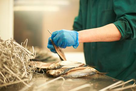 Man in smokehouse filleting fish
