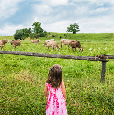 3 4 years: Real view of girl looking at cows grazing in field, Fuessen, Bavaria, Germany LANG_EVOIMAGES