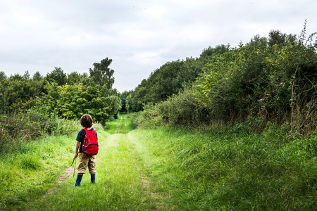 Rear view of boy with backpack on rural landscape