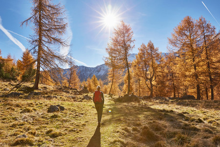 Woman hiking, rear view, Schnalstal, South Tyrol, Italy