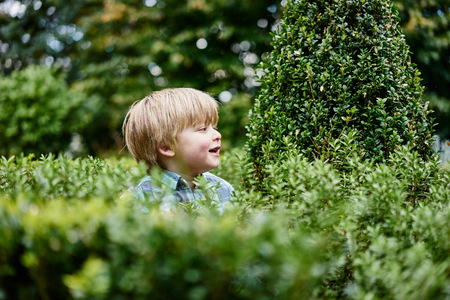 Boy surrounded by foliage looking away