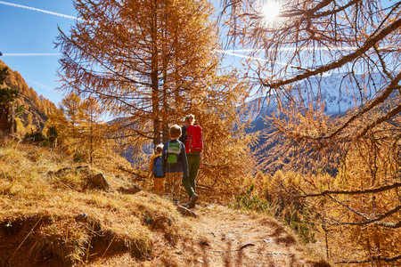 Family hiking, rear view, Schnalstal, South Tyrol, Italy LANG_EVOIMAGES