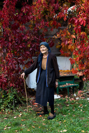 aging woman: Portrait of senior woman with walking stick standing in autumn garden