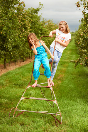 Girls on step ladder in apple orchard