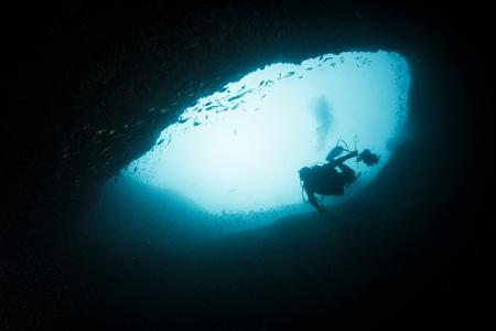 Diver zbiera inwazyjne pstra z lokalnej rafy LANG_EVOIMAGES