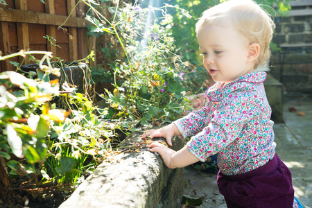 Baby girl leaning on wall looking at plants LANG_EVOIMAGES