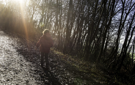 Young boy walking in forest,rear view