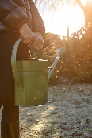 Senior Woman Standing In Garden, Holding Watering Can, Mid Section