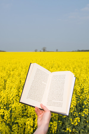 Person With Book In Field