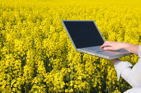 Person With Laptop In Field