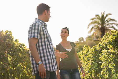 Male and female winemakers having discussion in vineyard, Las Palmas, Gran Canaria, Spain LANG_EVOIMAGES