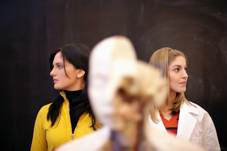 Students with anatomical model