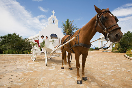 Newlyweds on horsedrawn carriage LANG_EVOIMAGES