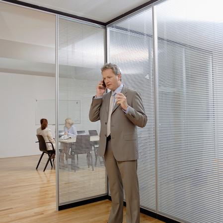 Businessman using a cellular telephone LANG_EVOIMAGES