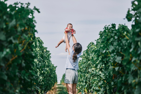Woman holding up baby daughter in vineyard, Bergerac, Aquitaine, France LANG_EVOIMAGES