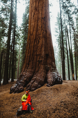 Male wild camper sitting on log wrapped in red sleeping in Sequoia National Park, California, USA LANG_EVOIMAGES