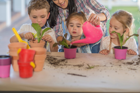 Mid adult woman helping young children with gardening activity