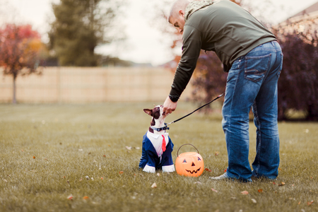 Man in park petting his boston terrier wearing business attire for halloween LANG_EVOIMAGES