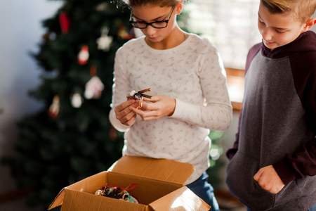 Brother and sister putting up Christmas decorations LANG_EVOIMAGES