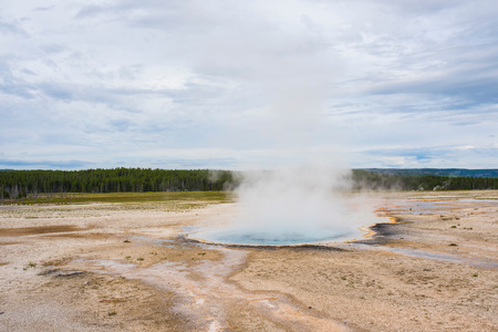 Landscape with steaming geyser, Yellowstone National Park, Wyoming, USA