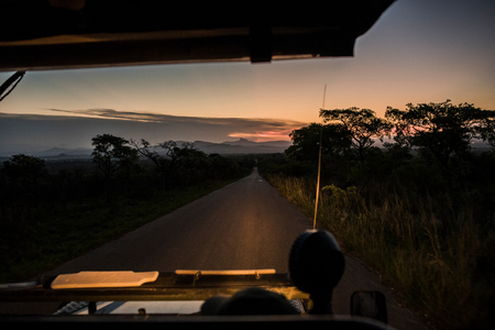View from vehicle of road ahead at dusk, Kruger National Park, South Africa