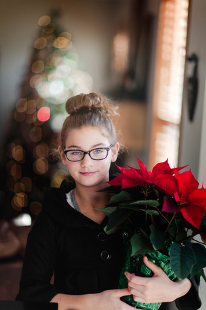 Girl holding christmas poinsettia in living room,portrait