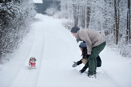 Young couple playing with dog in snow covered forest, Ontario, Canada LANG_EVOIMAGES