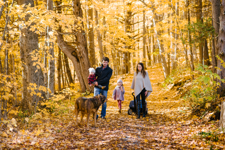 Family of four and dog in forest