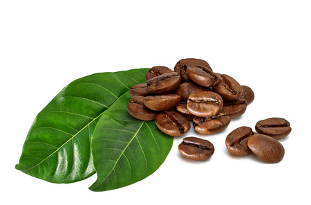 cafe colombiano: coffee beans with leaves on white background Foto de archivo