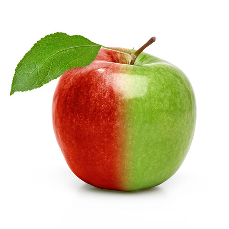 genetically modified organism: GMO, genetically modified organism apple with leaf on a white background
