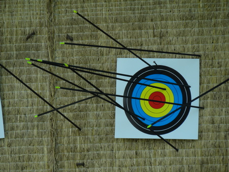 hit: arrows hit target successful concept Stock Photo