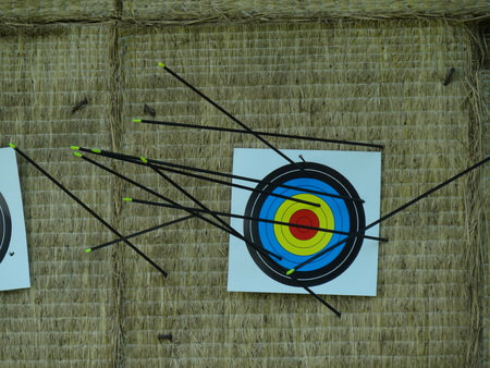 arrows hit target successful concept Stock Photo