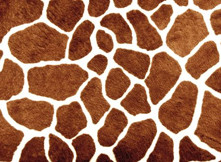 white background giraffe: Brown spots with white lines