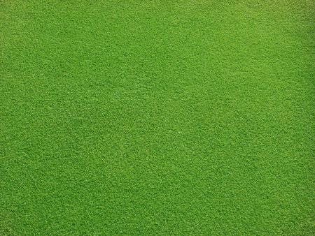Very smooth grass for background Stock Photo