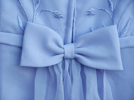 Blue dress bow with some flowers  photo
