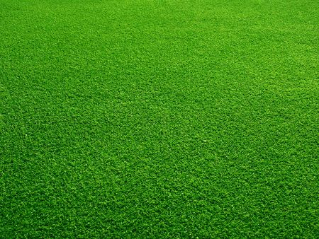Green grass field for background