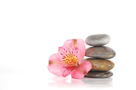 Spa stones with flowers and white space Stock Photo