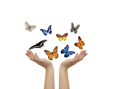 exotic butterflies: BUTTERFLY AND HANDS
