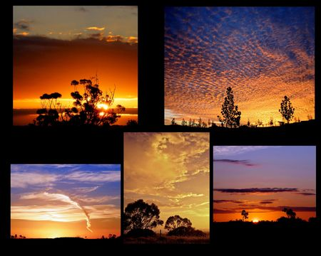 Sunset Landscape Collage photo