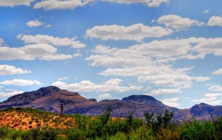 sonoran desert: Desert Landscape Arizona