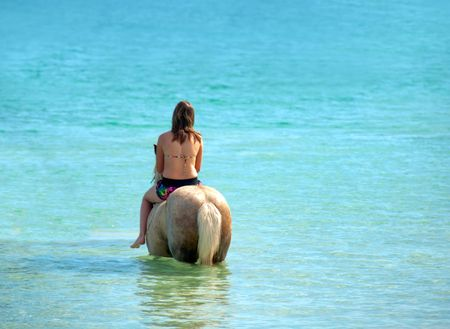 Female riding a horse at the beach photo