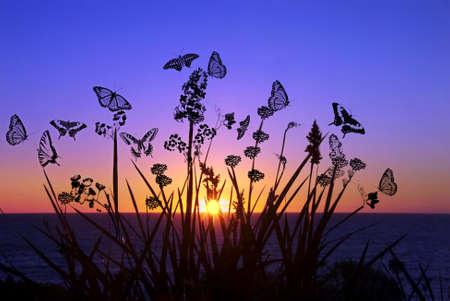 Schmetterlinge Landschaft Illustration Lizenzfreie Bilder