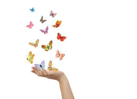 release: Hand and butterflies Stock Photo