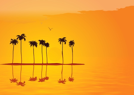 Tropical sunset illustration Stock Illustration - 8507539