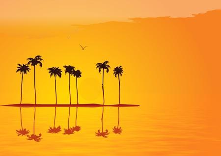 Tropical sunset illustration Stock Illustration - 8507539